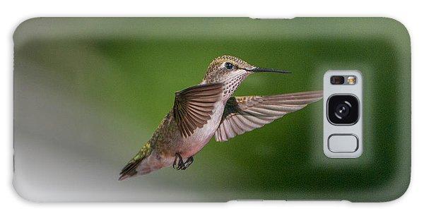 Female Ruby Throated Hummingbird Galaxy Case