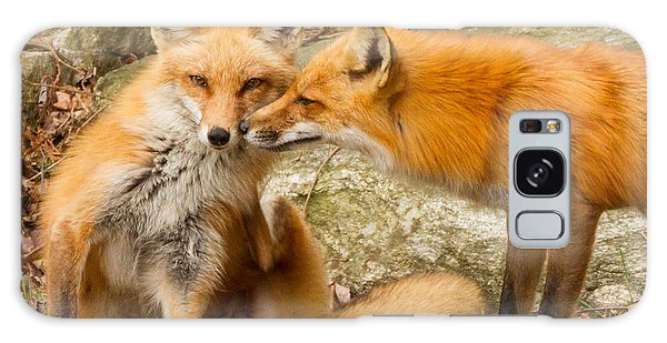 Foxes In Love Galaxy Case