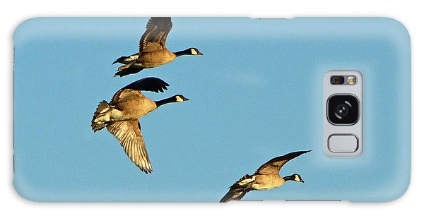 3 Geese In Flight Galaxy Case