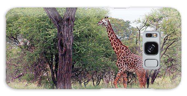 Giraffes Eating Acacia Trees Galaxy Case