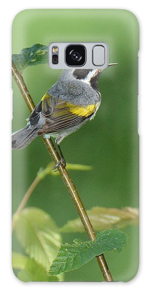 Golden-winged Warbler Galaxy Case