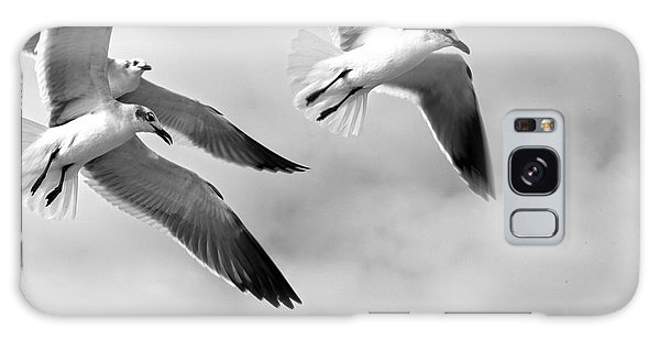 3 Gulls Galaxy Case