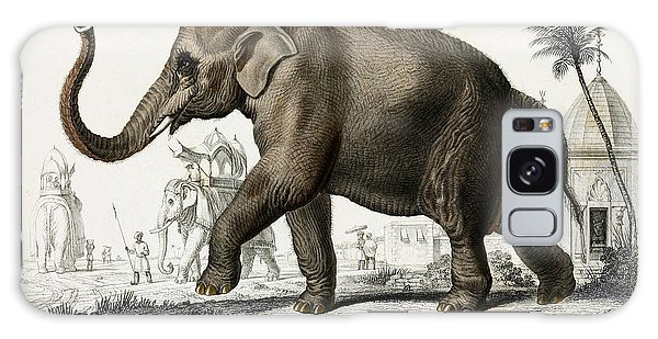 Indian Elephant, Endangered Species Galaxy Case by Biodiversity Heritage Library