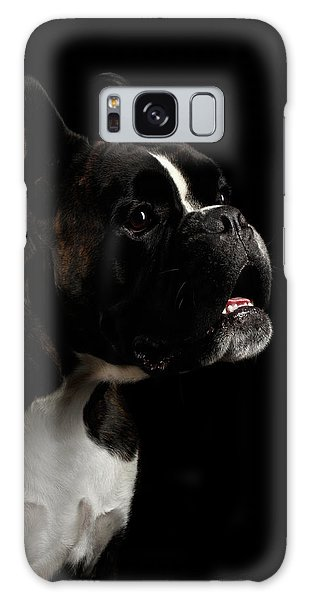 Purebred Boxer Dog Isolated On Black Background Galaxy Case