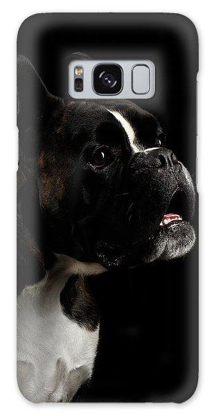 Dog Galaxy S8 Case - Purebred Boxer Dog Isolated On Black Background by Sergey Taran