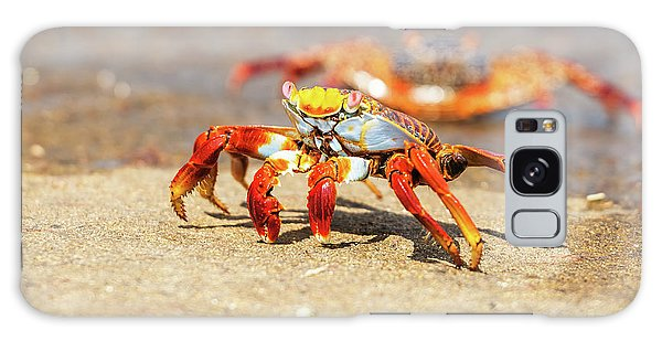 Sally Lightfoot Crab On Galapagos Islands Galaxy Case by Marek Poplawski