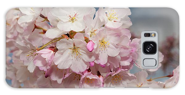 Silicon Valley Cherry Blossoms Galaxy Case by Glenn Franco Simmons