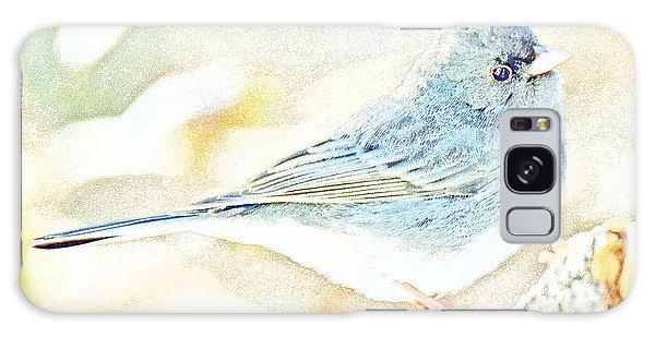 Slate-colored Junco, Snowbird, Male, Animal Portrait Galaxy Case