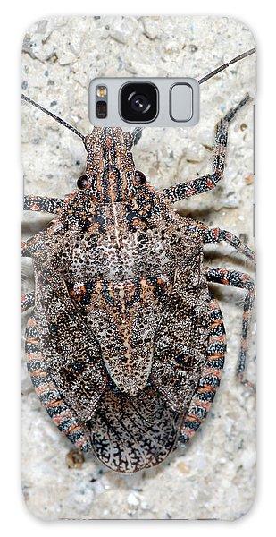Stink Bug Galaxy Case