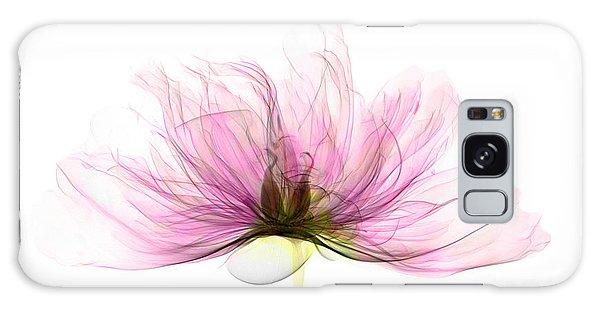 X-ray Of Peony Flower Galaxy Case