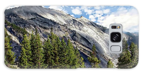 Yosemite National Park Galaxy Case