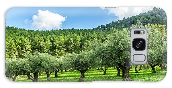 Olive Branch Galaxy Case - Young Olive Grove by Tsafreer Bernstein