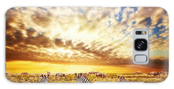 Zebras Herd On African Savanna At Sunset. Galaxy Case