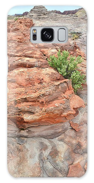 Colorful Sandstone In Valley Of Fire Galaxy Case