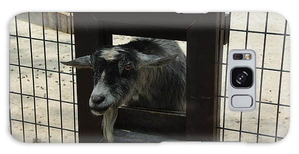3d Tv Goat 1 Galaxy Case by Robyn Stacey