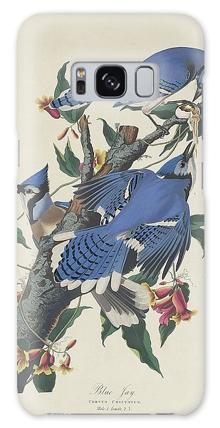 Engraving Galaxy Case - Blue Jay by Dreyer Wildlife Print Collections