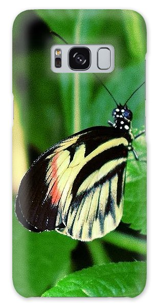 Butterfly No. 4 Galaxy Case by Sandy Taylor
