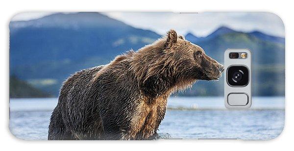 Coastal Brown Bear  Ursus Arctos Galaxy Case by Paul Souders