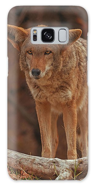 Coyote  Galaxy Case
