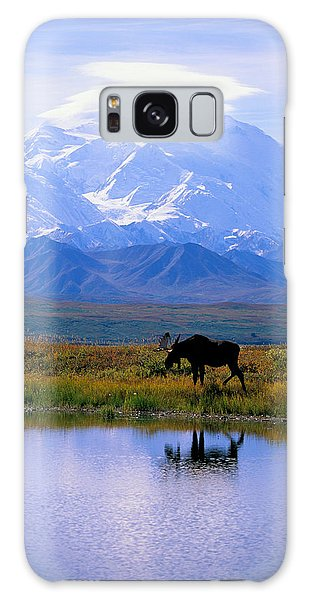 Wildlife Galaxy Case - Denali National Park by John Hyde - Printscapes