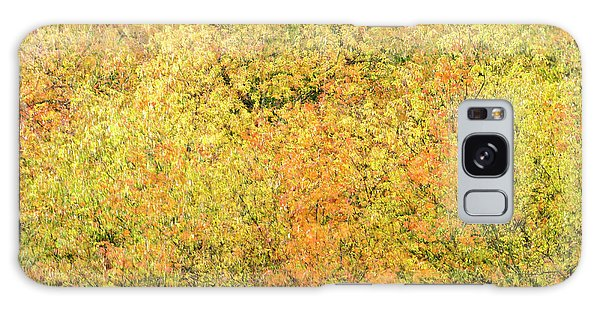 Galaxy Case featuring the photograph Fall Colors - Abstract by Shankar Adiseshan