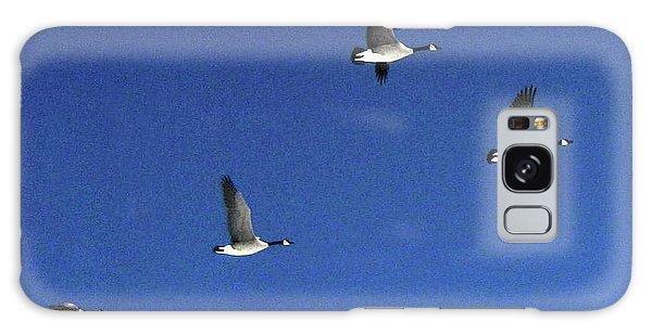 4 Geese In Flight Galaxy Case