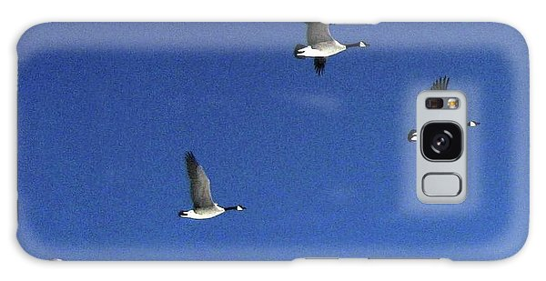 4 Geese In Flight Galaxy Case