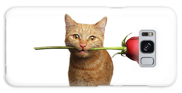 Portrait Of Ginger Cat Brought Rose As A Gift Galaxy Case