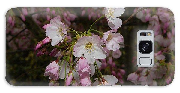 Silicon Valley Cherry Blossoms Galaxy Case