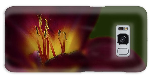 Galaxy Case featuring the photograph 4479 by Peter Holme III