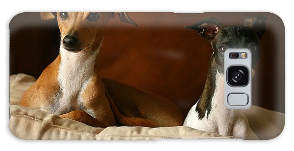 Italian Greyhounds Galaxy Case