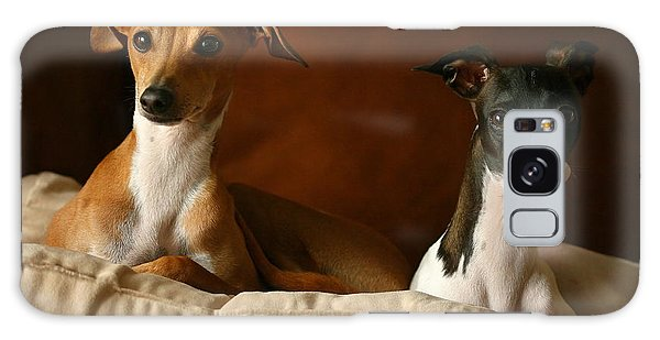 Italian Greyhounds Galaxy Case