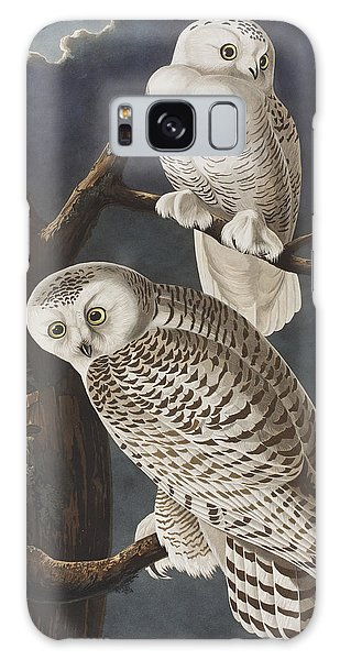 Owl Galaxy Case - Snowy Owl by John James Audubon