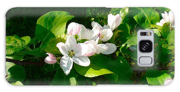Apple Blossoms Galaxy Case by Johanna Bruwer