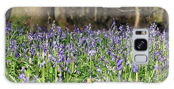 Bluebells At Banstead Wood Surrey Uk Galaxy Case