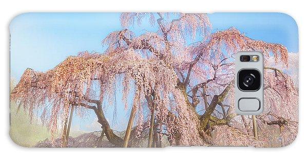Galaxy Case featuring the photograph Miharu Takizakura Weeping Cherry29 by Tatsuya Atarashi