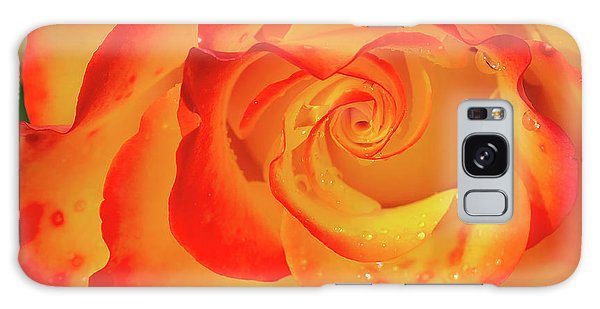 Rose Beauty Galaxy Case by Shirley Mitchell