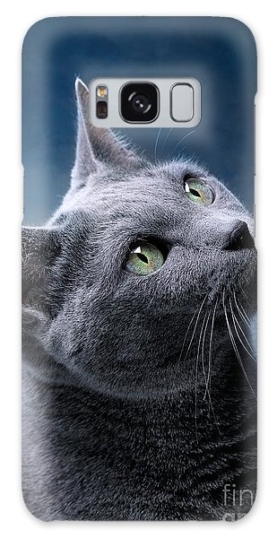 Cat Galaxy Case - Russian Blue Cat by Nailia Schwarz