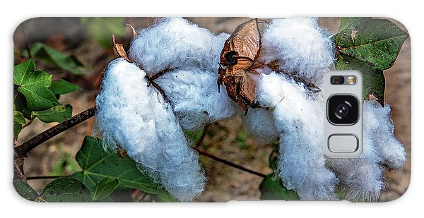 8 Bolls Of Cotton  Galaxy Case