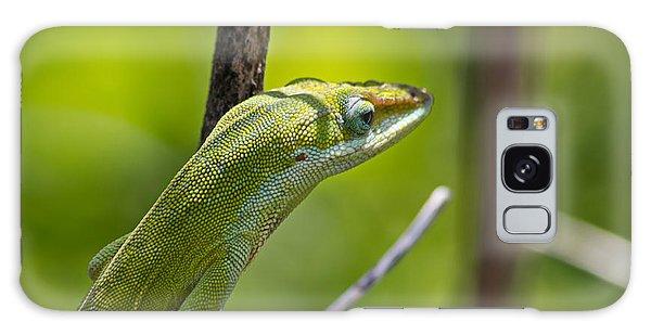 Green Lizard Galaxy Case