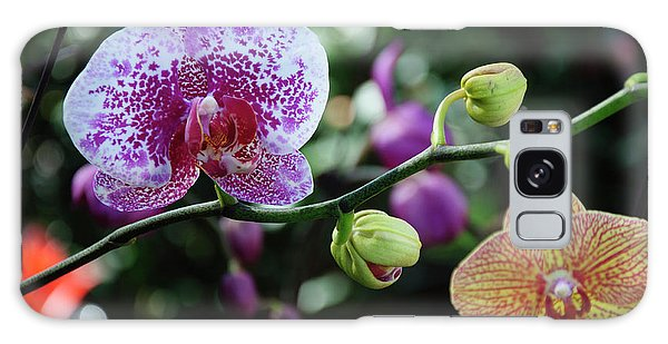 Butterfly Orchid Flowers Galaxy Case