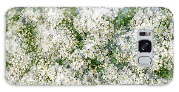 Spring Season - Inspired By Jackson Pollock Galaxy Case