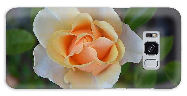 A Baby Rose Galaxy Case