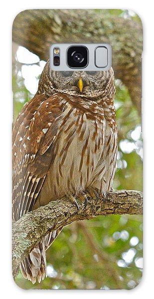 A Barred Owl Galaxy Case