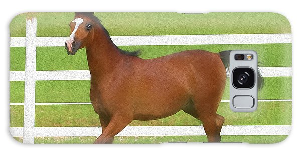 A Beautiful Arabian Filly In The Pasture. Galaxy Case