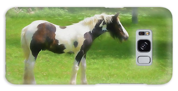 A Beautiful Young Gypsy Vanner Standing In The Pasture Galaxy Case