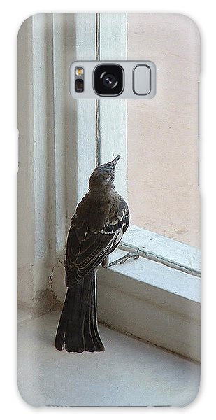 A Bird At A Plate Glass Window Galaxy Case