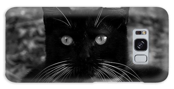 A Black Cat's Life -florida Galaxy Case