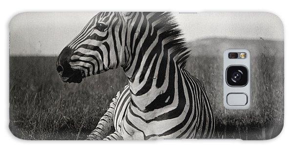 A Burchells Zebra At Rest Galaxy Case