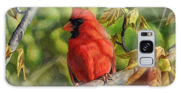 A Cardinal Named Carl Galaxy Case
